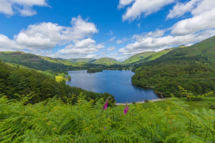 Things to do in Spring in the Lake District